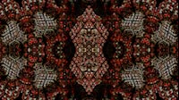 Block Fractal Kaleida Red