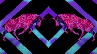 Bulls With Squares Purple Blue Cyan