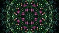 Flower Kaleida 4