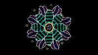 Graphix Leaves Wheel 2
