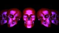 Halloween Skulls Full Carousell