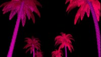 Neon Palm Trees Bottom Up Rows