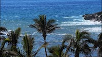 Ocean View With Palm Trees And Volcanic Shore