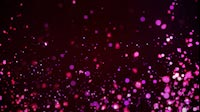 Pink And Purple Particles From Bottom To Top