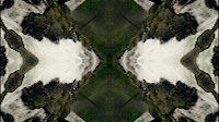 Trippy Jungle Waterfall And Rocks