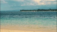 Tropical Island Shore
