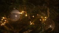 Two Golden Christmas Balls Hanging In Christmas Tree