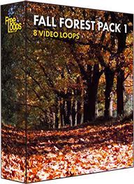 Fall Forest Pack 1