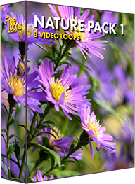 Nature Pack 1