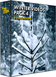 Winter Videos Pack 4