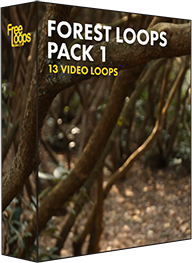 Forest Loops Pack 1